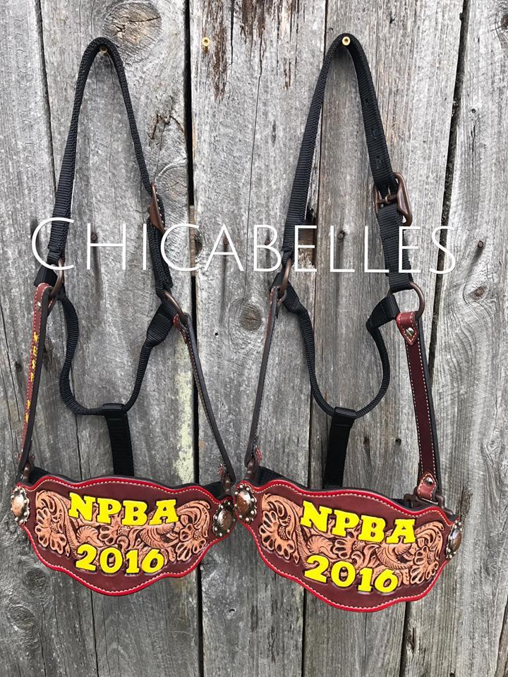 2017_NPBA_Award Halters.jpg