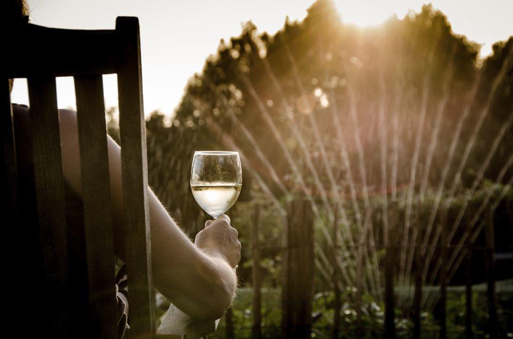 drinking-garden-relax-9206 (1).jpg