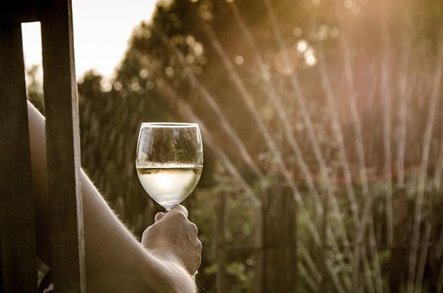 Not ALL of us are ready for the arrival of pumpkin spice, or at least we're not ready to let go of our summer wines just yet... @lbvino shares all the things on late summer wines and gives some insight on how to keep summer flowing a little while longer. Stop by 👉🏻www.be-elsewhere.com for the full read.