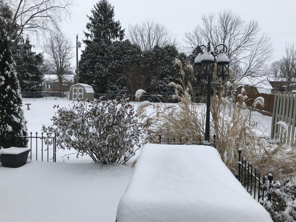 - Winter in Zone 5