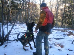 kyle_warren_dogs_search_and_rescue_K9_training2_preview.jpeg