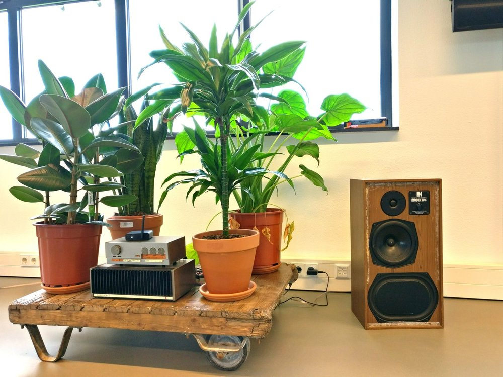 moderne kantoorruimte licht groene planten trolley urban jungle vintage speaker.jpg