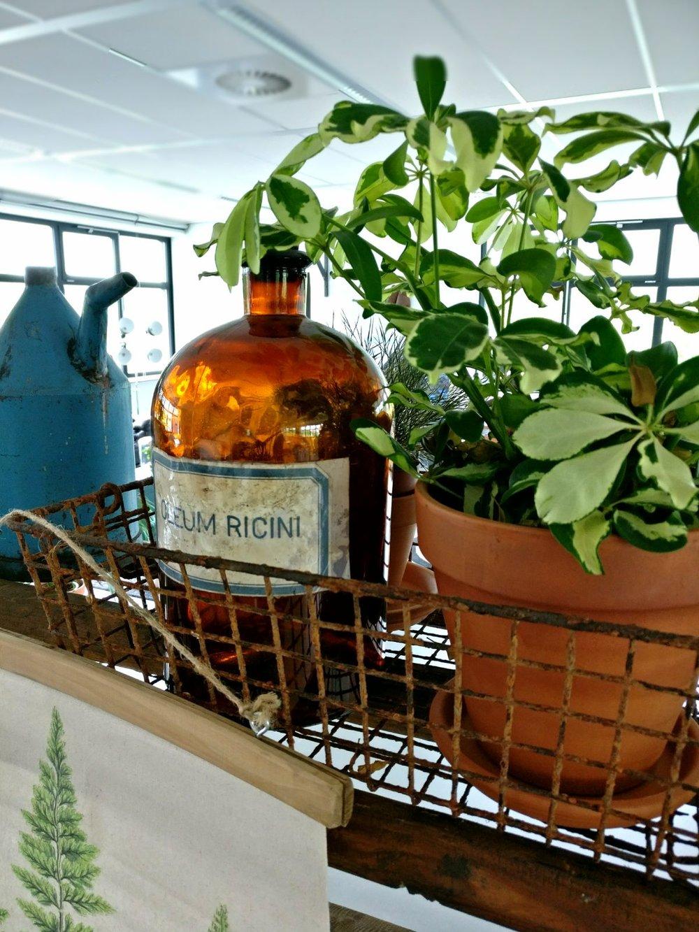 moderne kantoorruimte licht keuken apothekersfles apothekerspot vintage bakkersrek draadmand display groene planten urban jungle.jpg