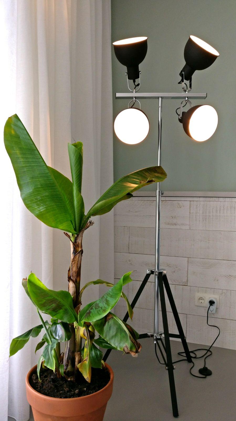 appartement nieuwbouw accessoires industrieel stoer industriële vloerlamp spots bananen plant urban jungle.jpg