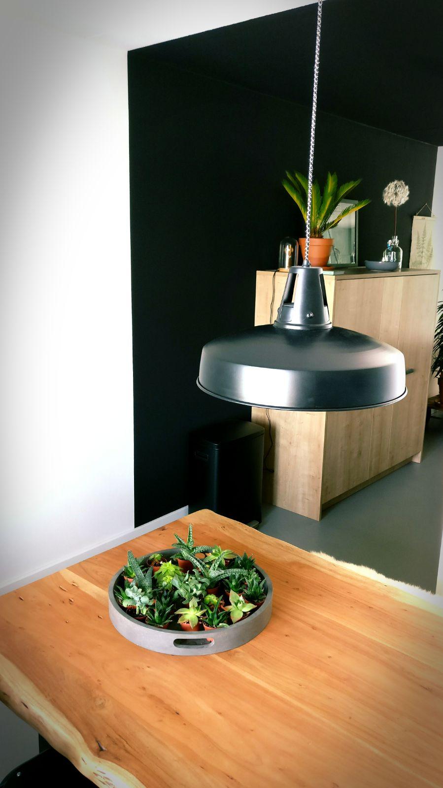 appartement nieuwbouw industrieel stoer boomstam tafel eettafel zwarte keuken eiken keuken planten urban jungle (3).jpg