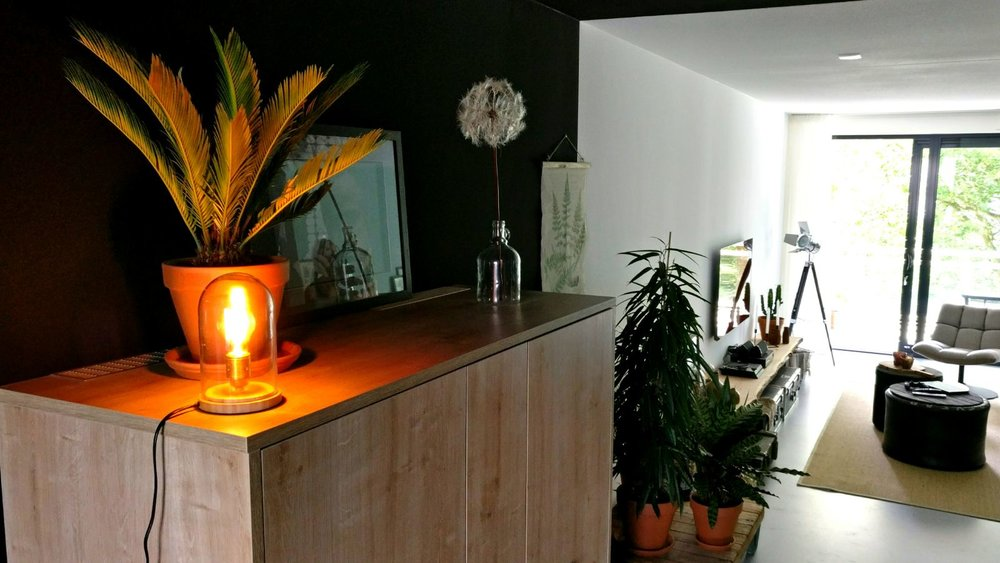 appartement nieuwbouw industrieel stoer zwarte keuken eiken keuken planten urban jungle (2).jpg