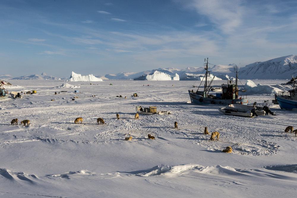 2.Defibaugh_Greenland_Uummannaq_a_36.jpg