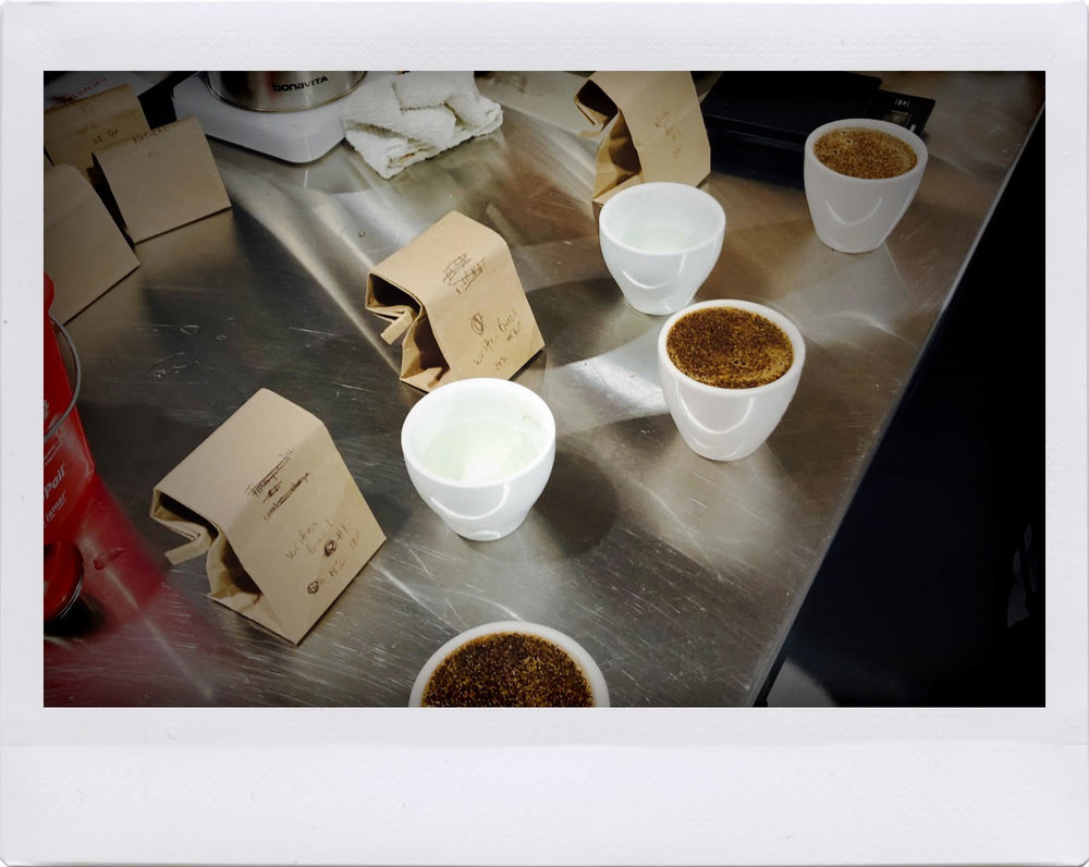 Chapter-2-Cupping-Written-Coffee.jpg