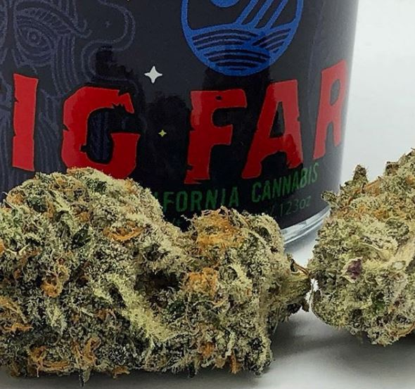 Fig Farms - Buy an eighth of Purple Fig or Black Razz and *get a Durban Poison UpNorth Pre-roll for One Dollar!