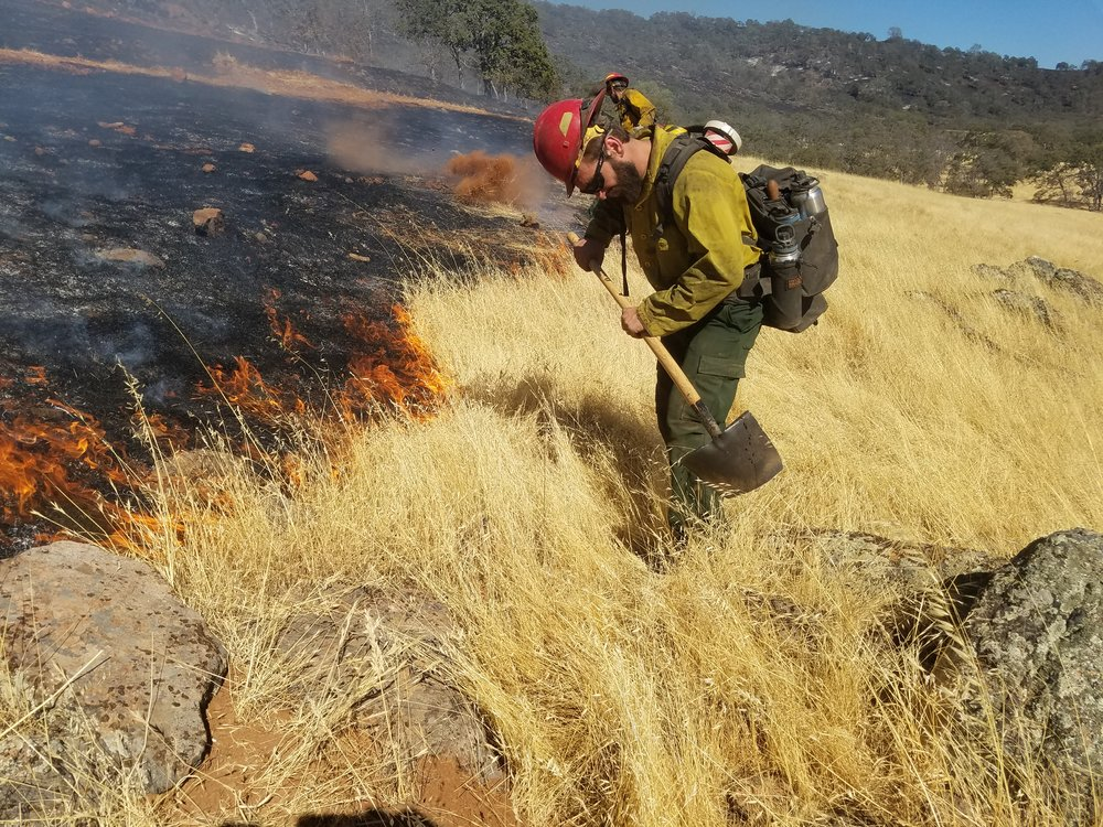 Rangeland Burn
