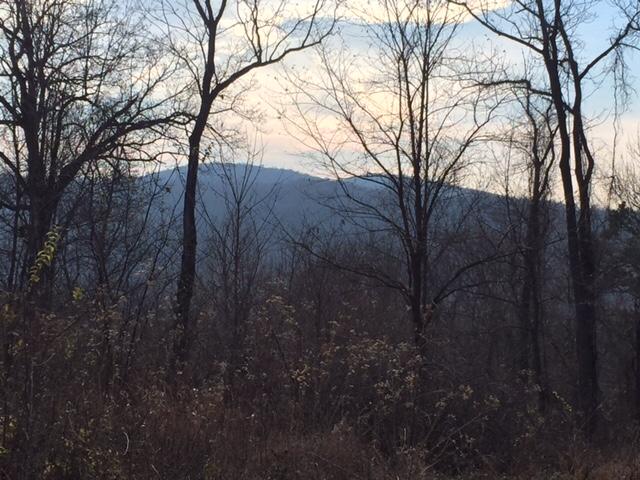 west view #2.JPG