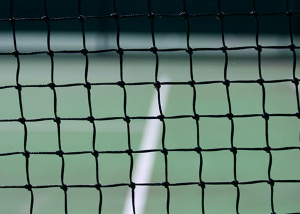 Nets & Posts - DouglasEdwards
