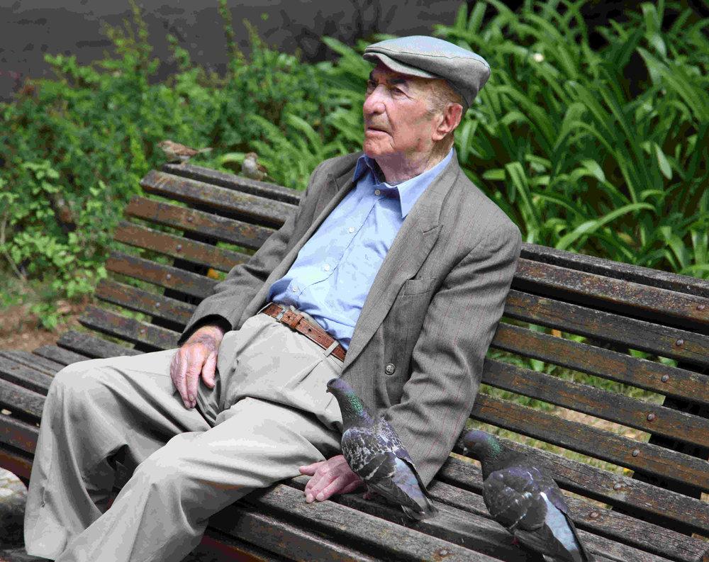 Spanish man on bench with pidgeons