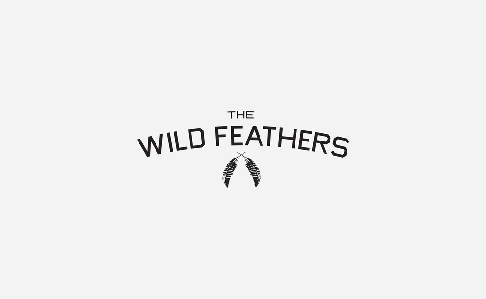 The Wild Feathers: Band
