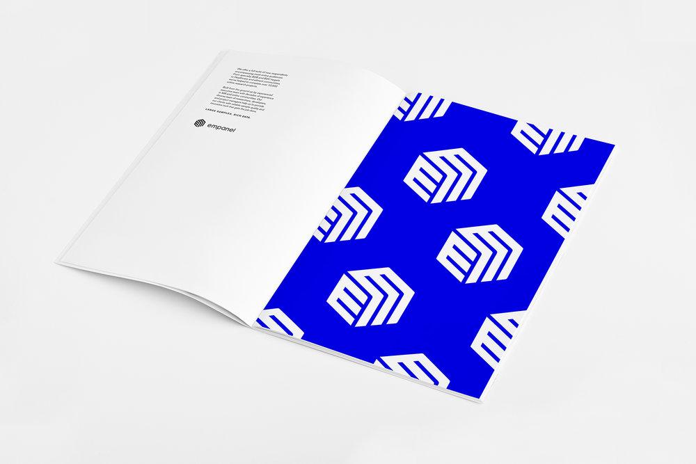 Empanel_Book_2A_w.jpg