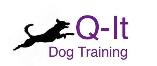 Q-it Dog Training
