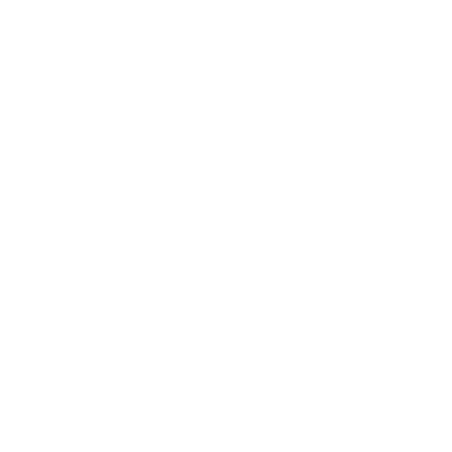 Dead Seconds Society