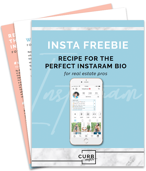 Instagram Bio Receipe Download Graphic.png