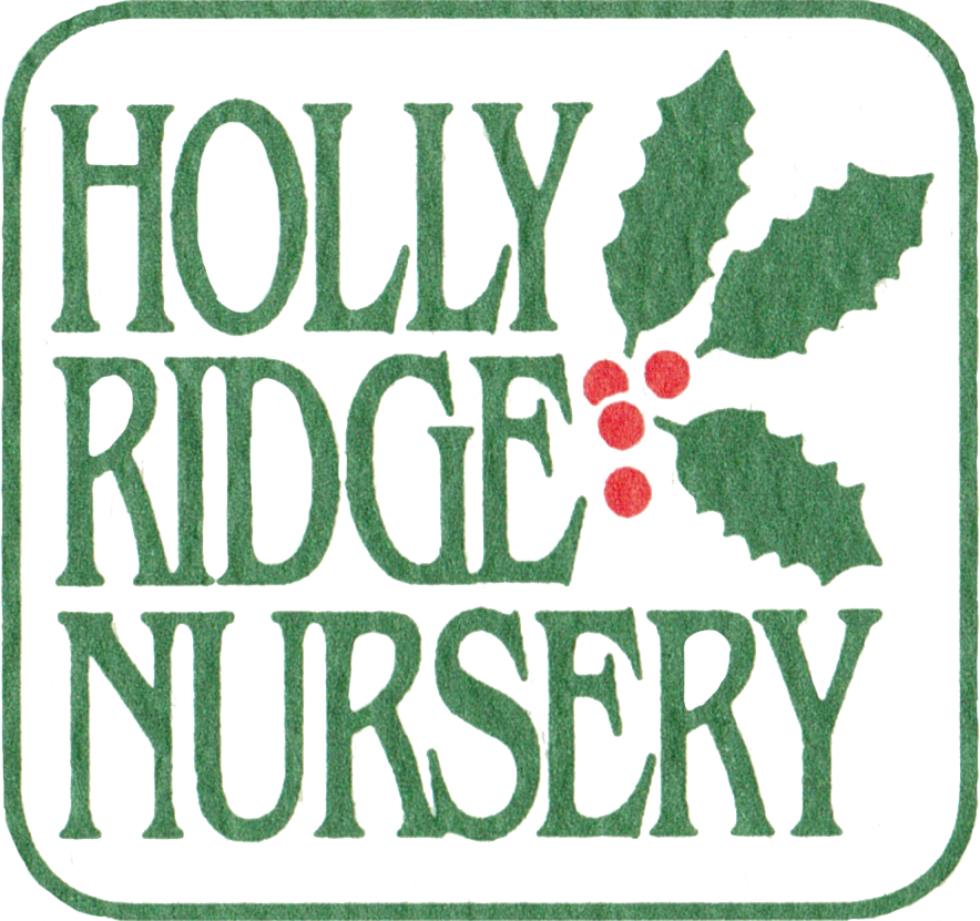 Holly Ridge Nursery