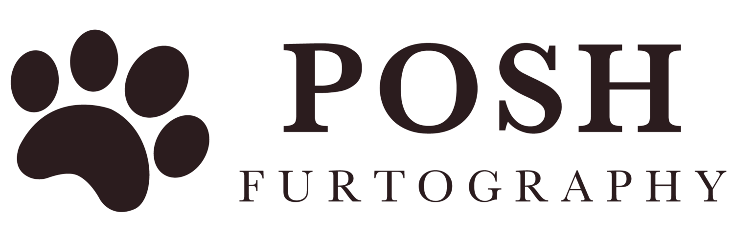 Posh Furtography