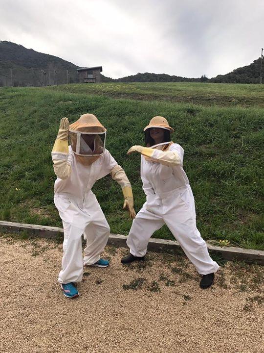 bees friends.JPG