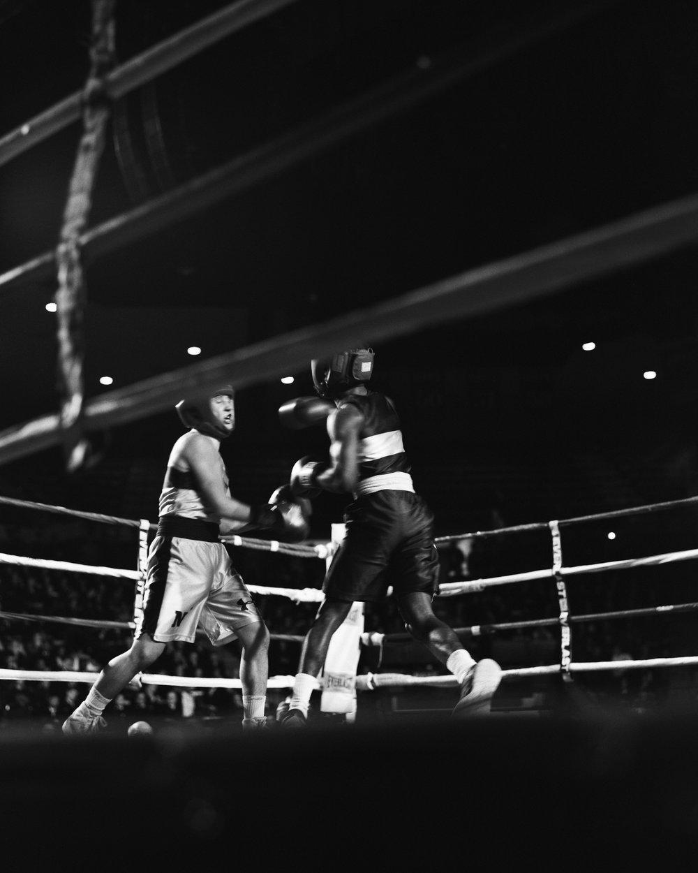 Boxing-12.jpg