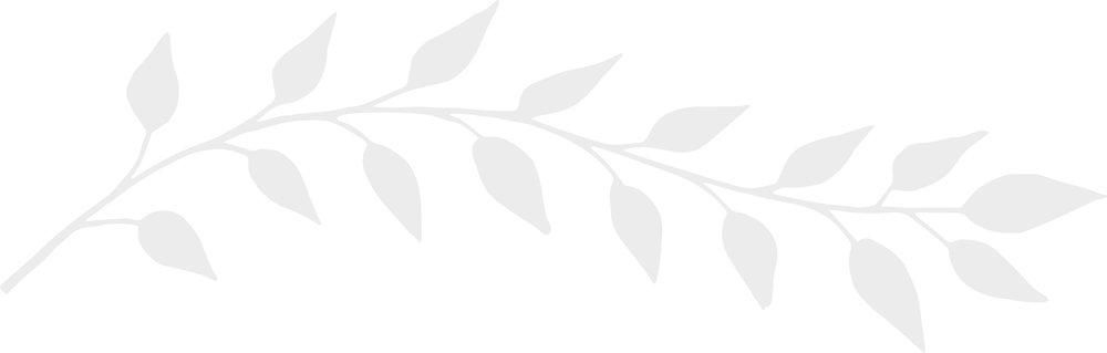 branch_grey_upsidedown.jpg