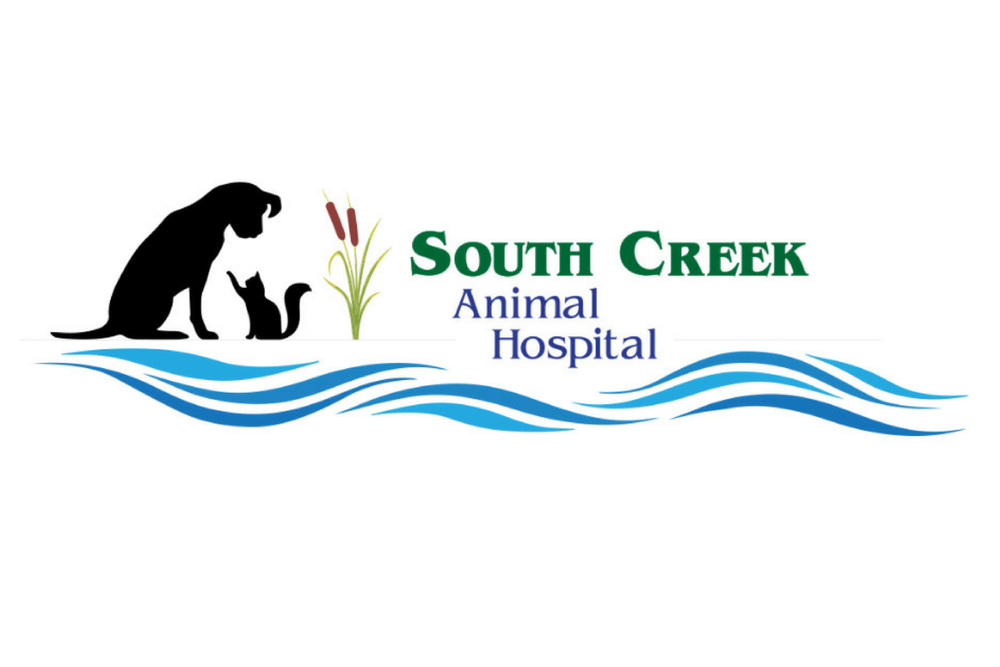 SOUTH CREEK3 logo.png