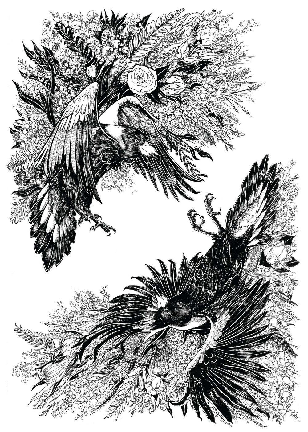 3 - magpie.jpg