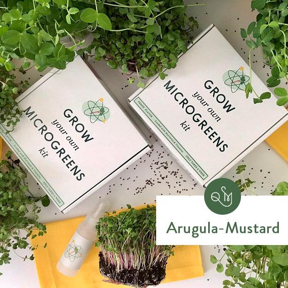 Grow_Microgreens_Kit_Arugula_Mustard_Quantumjpg