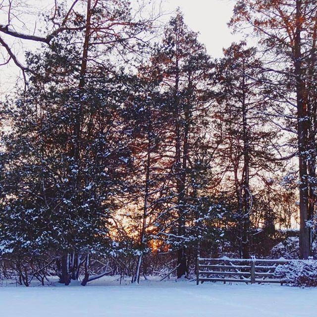 A huge snow storm: I want it, I got it