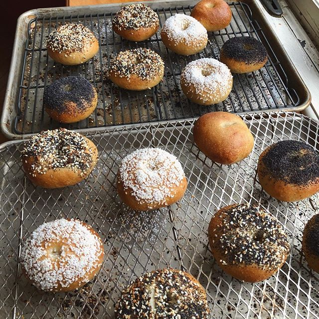 Fake snow storm hobbies = non stop mini bagel production. No really. And they good. DM me if you want some