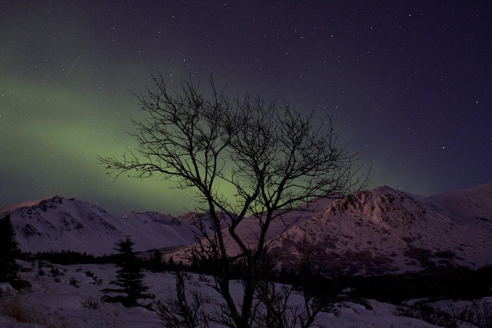 auroras 01302016_12.JPG