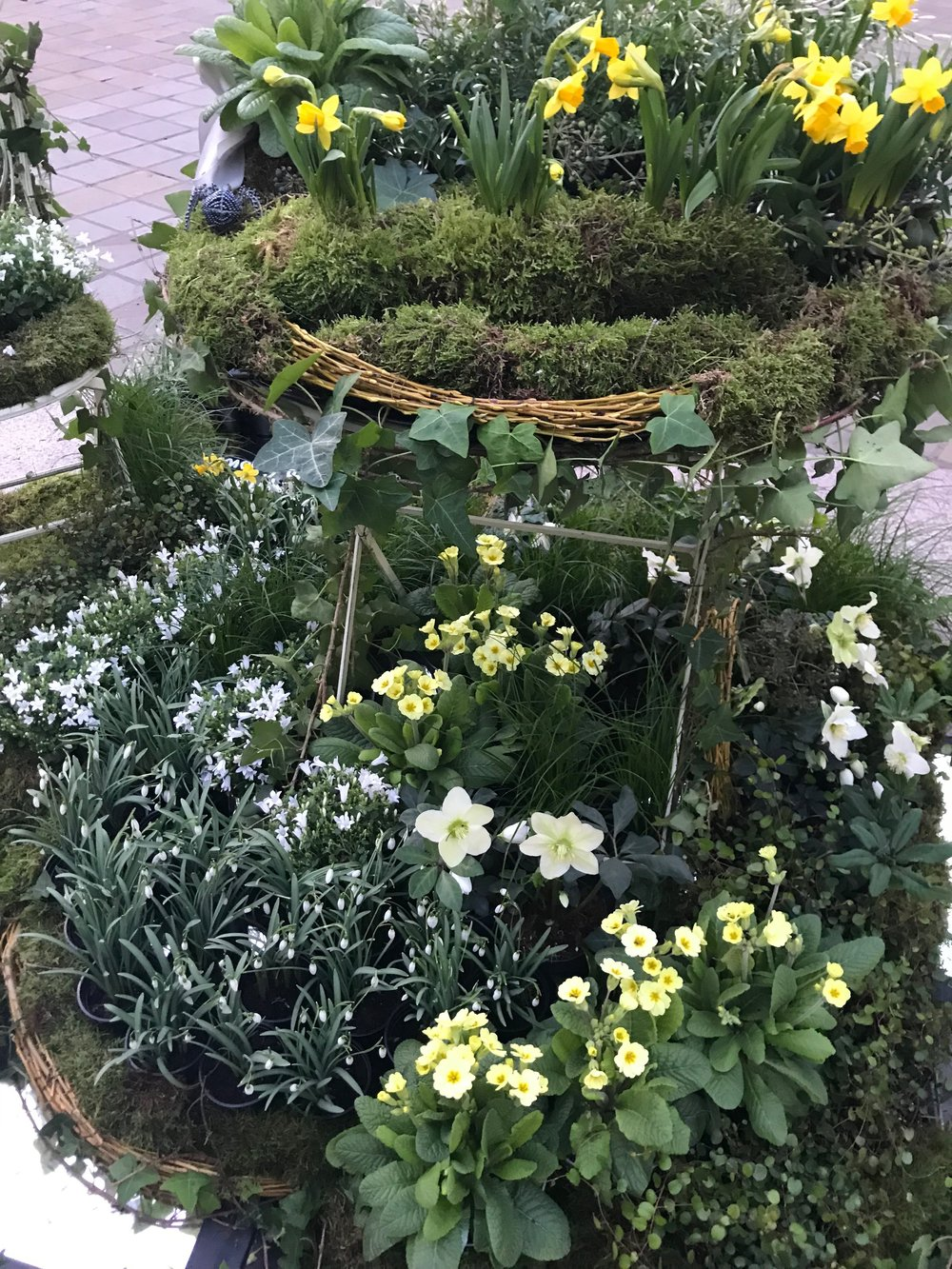 RHS Early Spring Fair 2018 - Gillian Goodson Designs