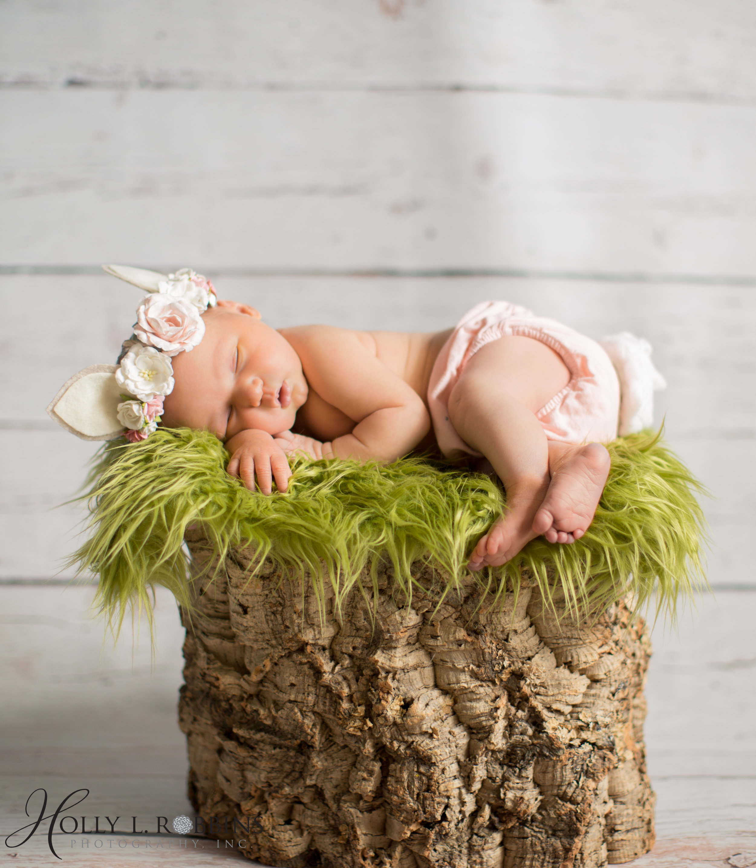 Monroe_Ga_Newborn_Photographers-31