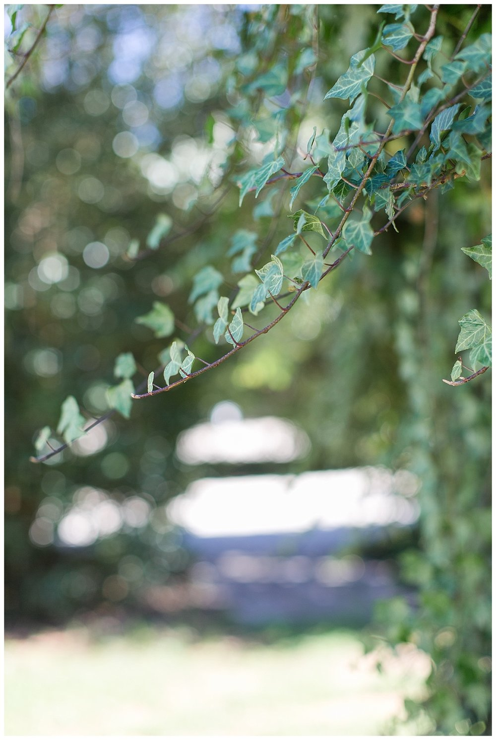 9_Oaks_Farm_The_Whitehouse_Monroe_Ga_Wedding_Photograpehrs_0036.jpg