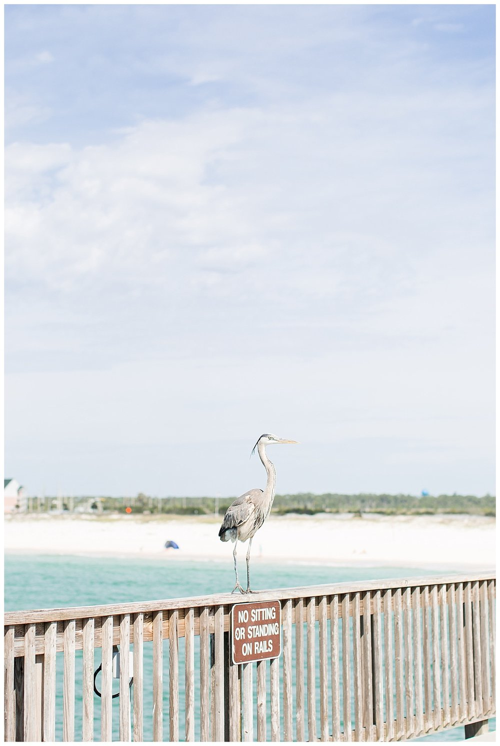 orange_beach_alabama_wedding_photographers_0069.jpg