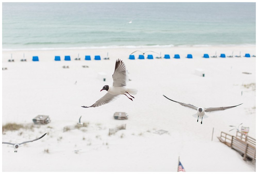 orange_beach_alabama_wedding_photographers_0078.jpg