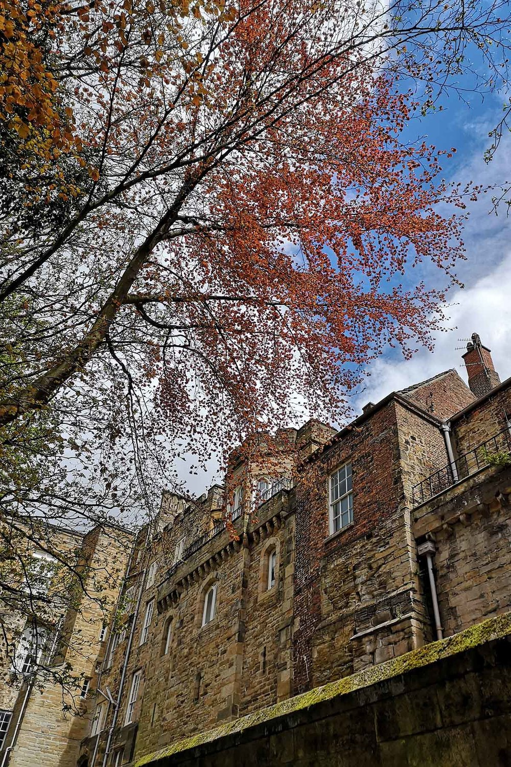 Autumnal cathedral external wall.jpg