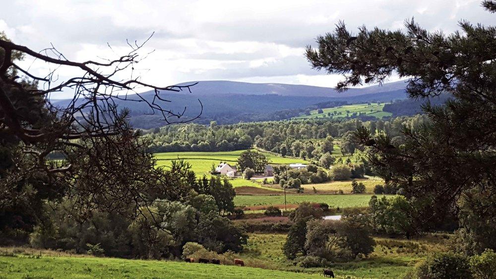 The Deeside Way - Dess, Aberdeenshire