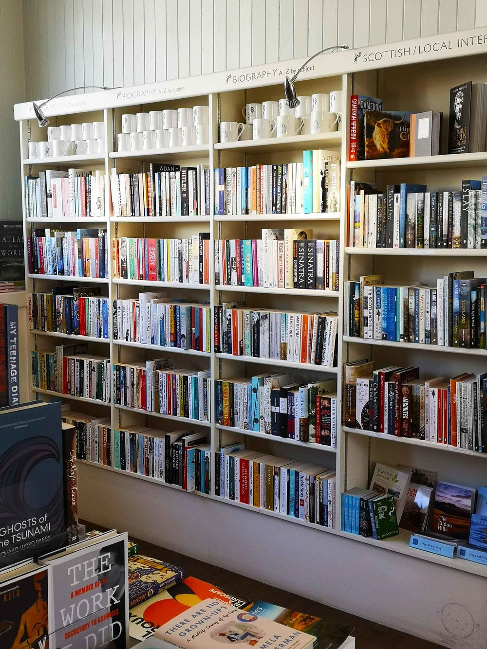 Mainstreet bookshelves.jpg