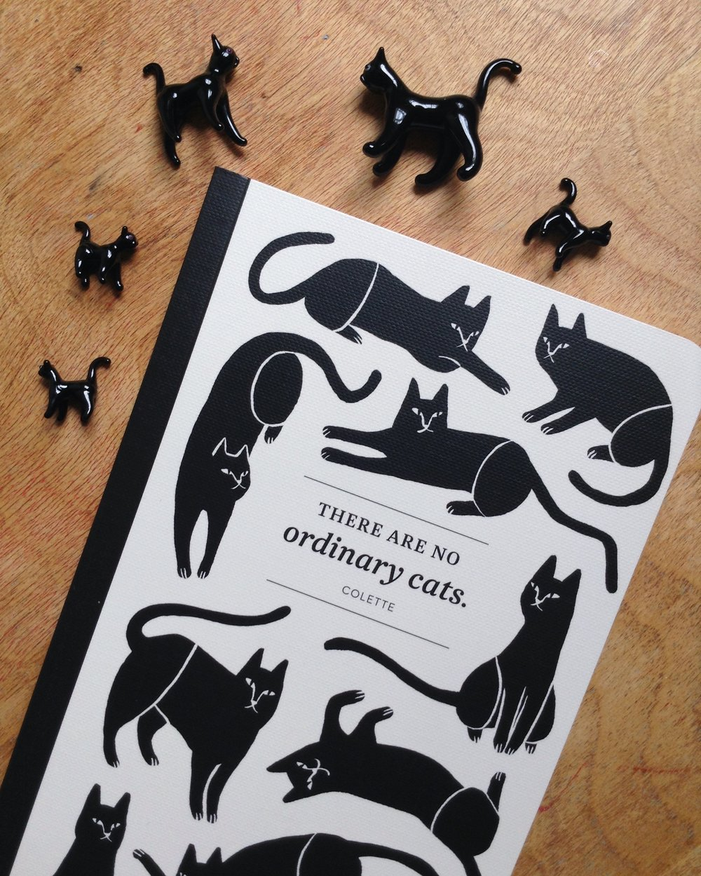 """There Are No Ordinary Cats"" Write Now Journal for Compendium - cover"