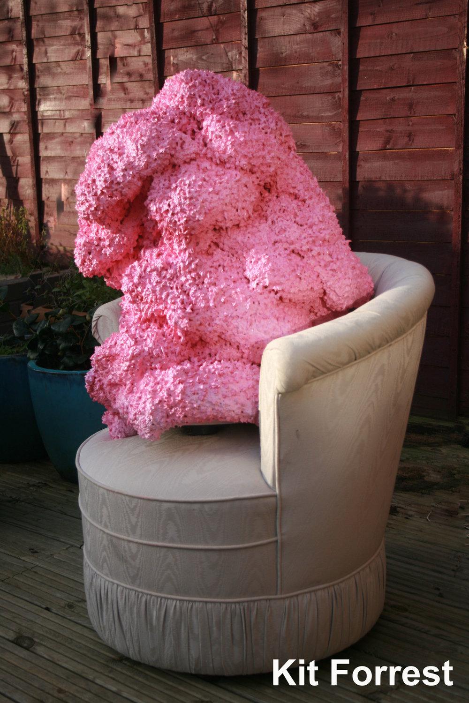 pink paint godes garden watermark.jpg