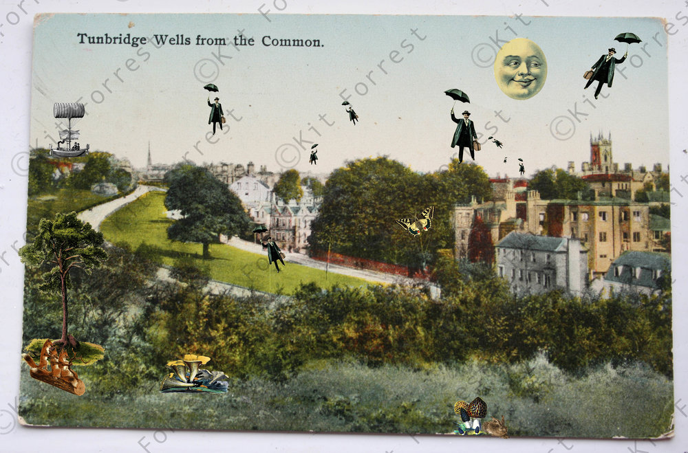 kit forrest The Daily Commute Tunbridge Wells Collage Kent History