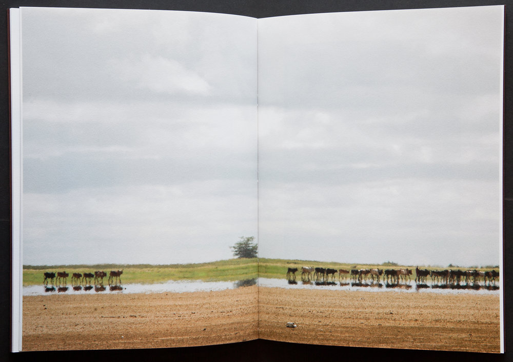 Some of the landscape photographs were printed as two page bleeds to powerfully put the reader in the scene.