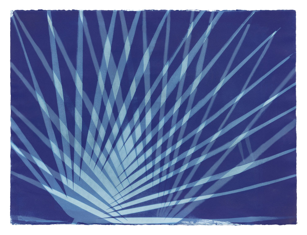 Erica Gimson. Textile cyanotype print. Erica will have a two person exhibit here in March/April along with her husband Sean Livingstone (paintings).