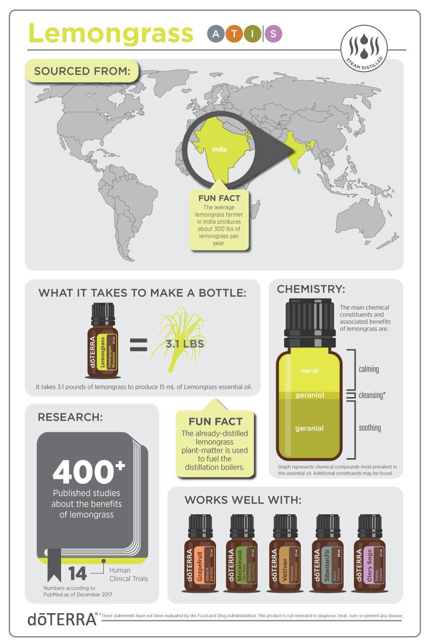 lemongrass info.jpg