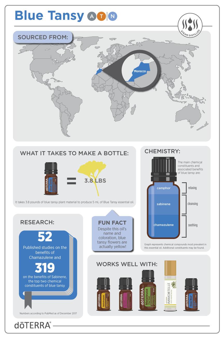 blue tansy info.jpg