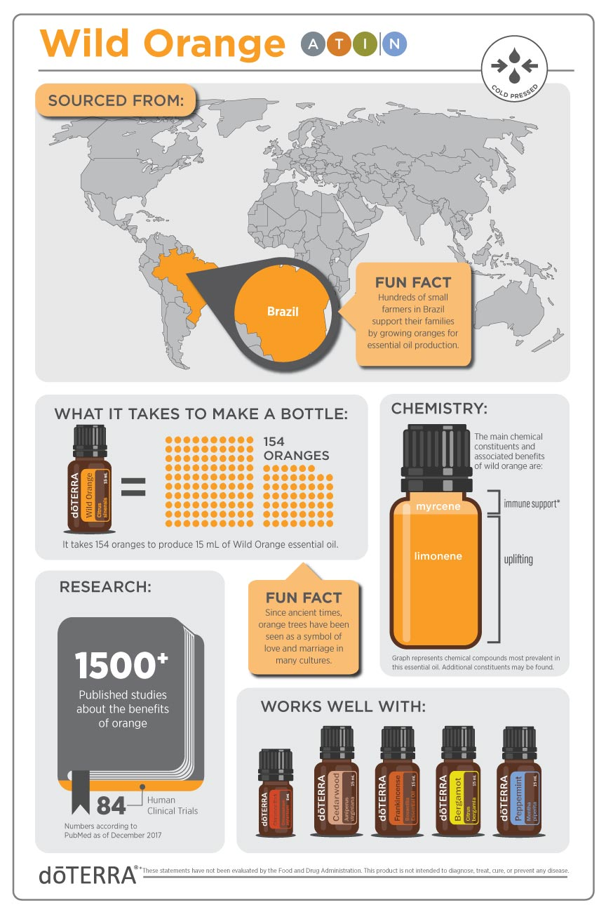 wild orange infographic.jpg