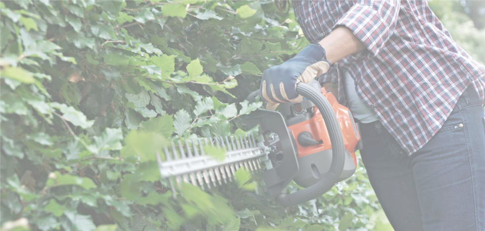 HEDGE TRIMMERS -